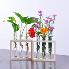 Colored Bud Vases Ivolador Wall Hanging Plant Test Tube Flower Bud Vase In Wooden
