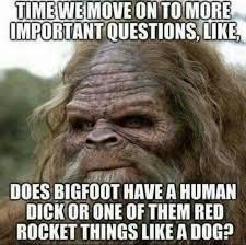 Funny Dick Memes - bigfoots dick stuff pinterest memes