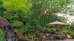 commercial tree services place tx