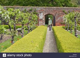 victorian garden walls formal laid out walled garden with pruned hedges at tyninghame