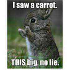 No Lie Meme - i saw a carrot this big no lie bunny meme roblox