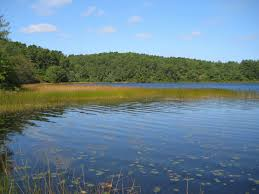 kettle ponds and climate change cape cod national seashore u s