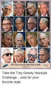 Meme Guide - 10 12 73 the trey gowdy hairstyle guide thi day show take the trey