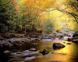 North Carolina natural attractions images 29 best fun places to visit in north carolina images jpg