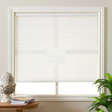 Blackout Cordless Roman Shades Interior Design Window Decoration Perfect Levolor Blinds Lowes