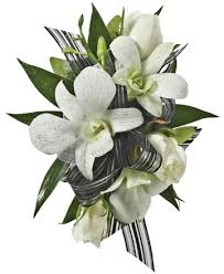 white orchid corsage decorated and white orchids corsage royer s flowers and