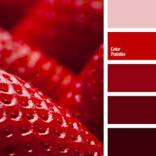 Warm Colors Best 25 Red Color Combinations Ideas On Pinterest Red Color