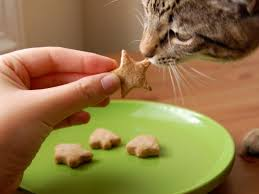 how to make all natural pet treats diy