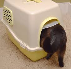 kitty litter box covered ebay cat litter box furniture kitty