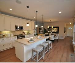 Plain Kitchen Cabinet Doors by Awful Picture Of Benefits Plain White Kitchen Cabinets Tags