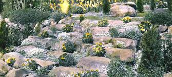 Best Rock Gardens 30 Rock Garden Designs Ideas