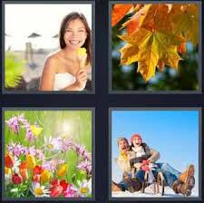 4 pics 1 word smilling leaves flowers riding