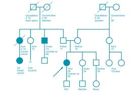 hereditary cancer risk assessment department of obstetrics