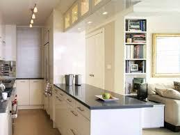 Kitchen Designs With Island Kitchen Surprising Galley Kitchen Designs Kitchen Design