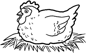 coloring page of a chicken cool chicken coloring pages preschool the ideas of coloring page