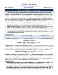 Ceo Resume Template Professional Account Executive Templates To Showcase Your Talent