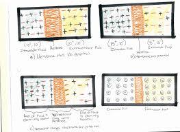 membrane potentials chemistry libretexts
