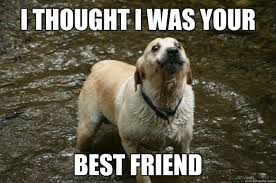 Your The Best Meme - 28 most funny best friends meme pictures and images