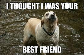 Meme Best Friend - 28 most funny best friends meme pictures and images