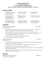 guidance counselor resume career counselor resume foodcity me