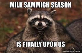 Sammich Meme - milk sammich season is finally upon us evil plotting raccoon
