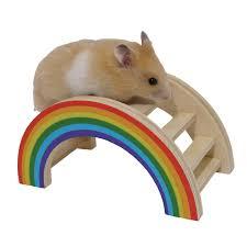 amazon com rainbow play bridge hamster u0026 small animal toy