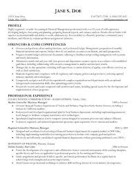 sample business resumes business resume example business