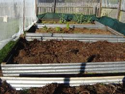 Horse Manure Vegetable Garden by Vegetable Garden 3 Raised Beds Our Family Projects