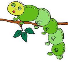 coloriages des petits insectes pour bébé  Tête à modeler