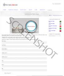 check request form template free daily sales report sample