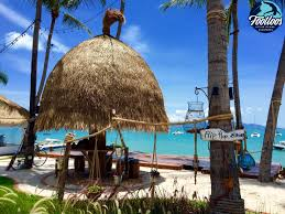 where to eat on koh samui the best places to eat on samui