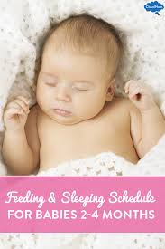 sleeping schedules for babies 2 to 4 months