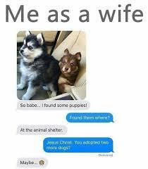 Dog Girlfriend Meme - me as a wife http ibeebz com the funniest board on pinterest