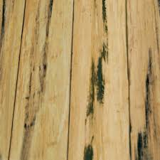 Lamett Laminate Flooring Reviews Bamboo American Floor Covering Center Flooring Hardwood