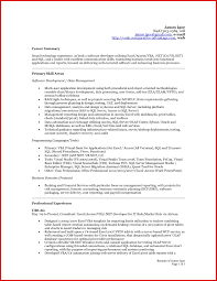 career summary statement exles accounting software best of accounting resume summary exles mailing format