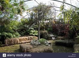 fairy dell indoor garden designed by sheena vernon garden