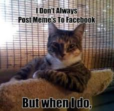 Dos Equis Memes - dos equis cat by ayanpike meme center