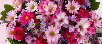 Names And Images Of Flowers - tips for choosing get well flowers proflowers blog