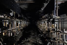 basement crime scene u2013 courtney celley