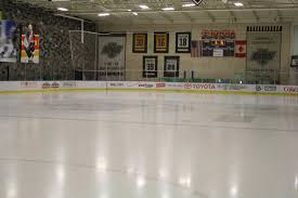 dasher board systems riley sports equipment