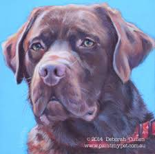 Chocolate Labrador Pet Portrait Painting Paintmypet Pet