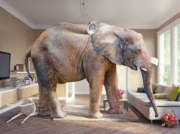 in the livingroom s blunder and the elephant in the living room adweek