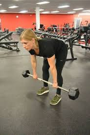 Bench Barbell Row Best 25 Barbell Row Ideas On Pinterest Barbell Back Exercises