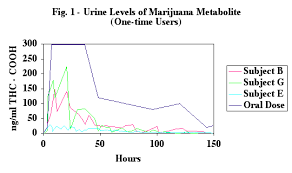 drug detection time table marijuana detection times and urine drug tests the weed street journal