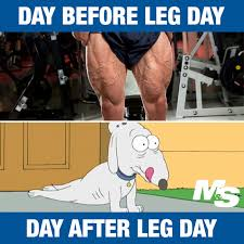 Calves Meme - 13 hilarious after leg day memes for people who really train