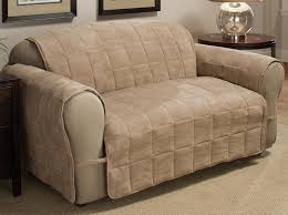 Leather Sofa And Dogs Living Room Awesome Decoration Using Light Brown Velvet