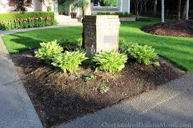 mavis butterfield backyard garden plot pictures 4 12 15 one