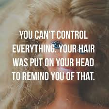 caption for big haircut best 25 funny hair quotes ideas on pinterest long hair quotes