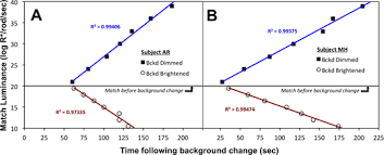 brightness in human rod vision depends on slow neural adaptation
