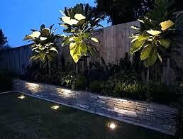 garden up lights light up your garden the way landscaping lights